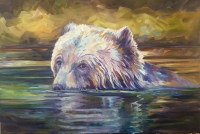 swimming-bear