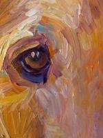 Rusty-detail-eye