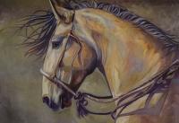 horses-leadin