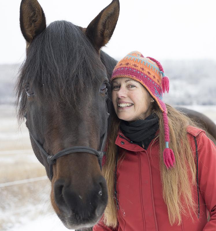 Diane Williams Horse